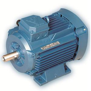الکتروموتورهای-سه-فاز-با-گرید-انرژی-IE2