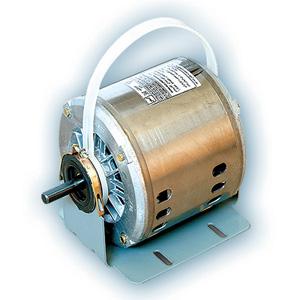 الکتروموتور-موتوژن
